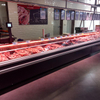 Large Space Fresh Meat Freezer for Sale of Various Meat with Micro-computer Controlle