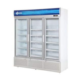 Movable Upright Cooler for Display And Sale of Beverages, Floral with Tempered Insulated Hinged Door